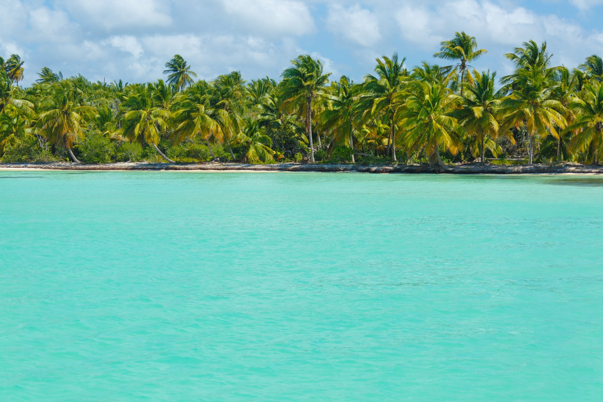 caribbean-island-coast-1457017105qVN